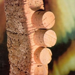 Cork Stoppers & Cork Waste